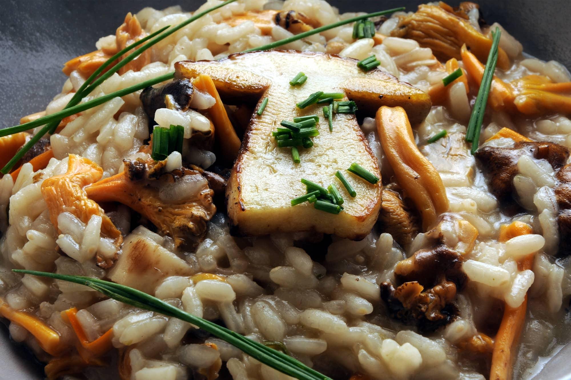 Close up of Scrumptous Mushroom Risotto